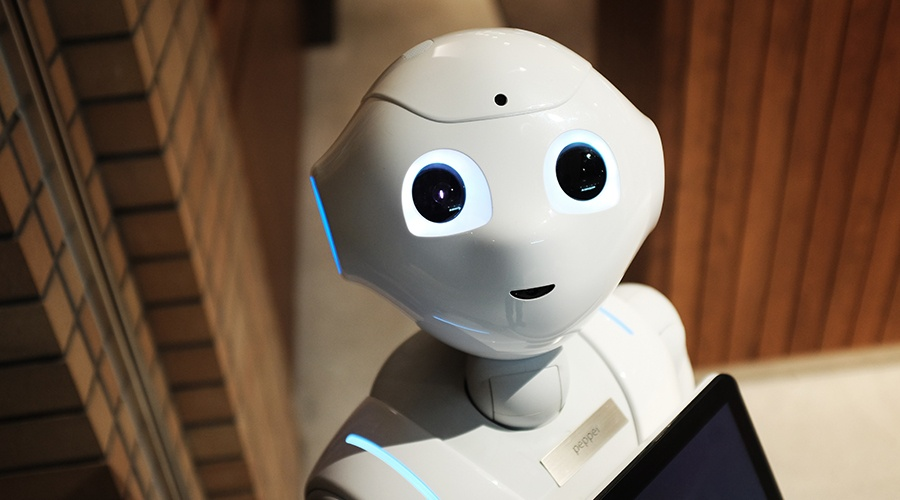 Read more about the article The Future of Humanoid Robots