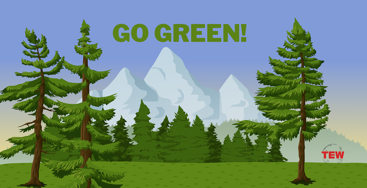 Why you should go green in 2021