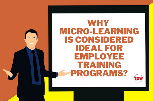 Read more about the article Why Micro-learning Is Considered Ideal For Employee Training Programs?