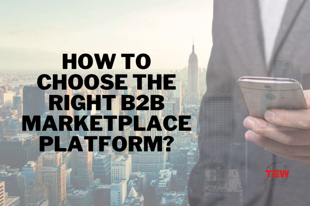 Read more about the article How to Capture Massive B2B Marketplace Growth Opportunities and Choose the Right B2B Marketplace Platform