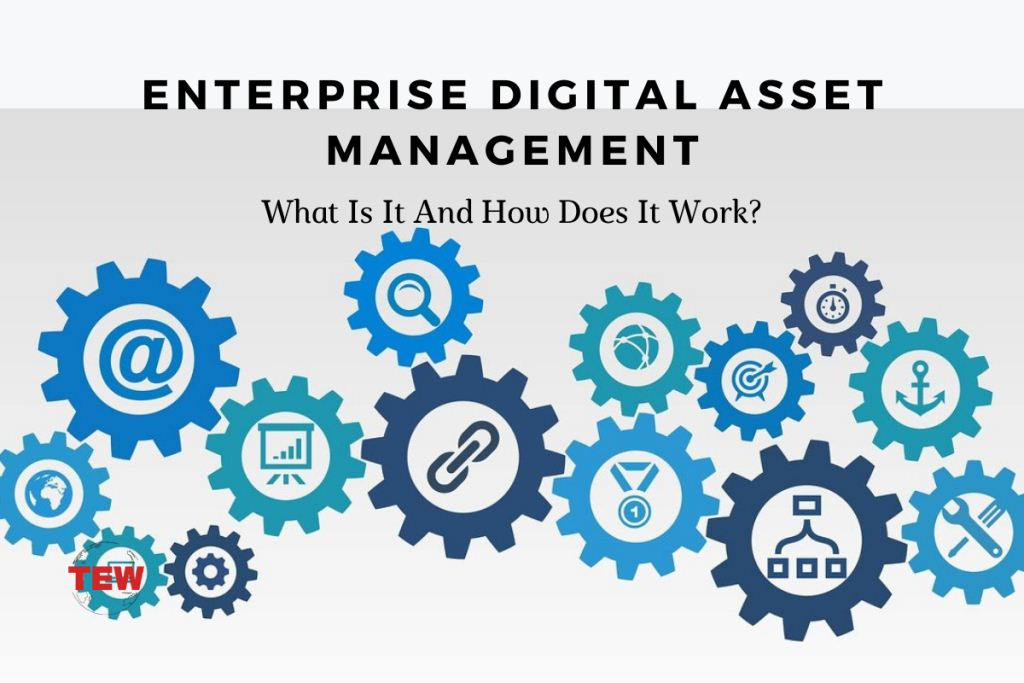 Enterprise Digital Asset Management: What Is It And How Does It Work?