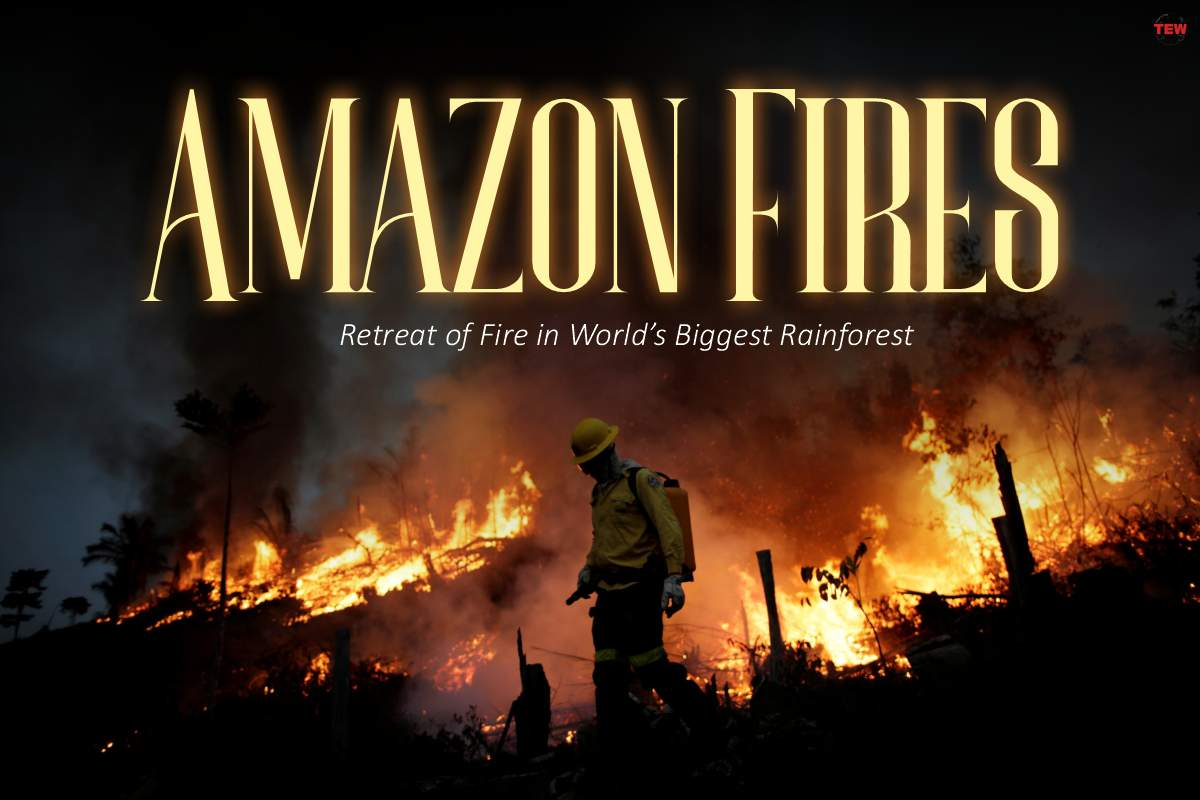 Amazon Fires: Retreat of Fire in World's Biggest Rainforest